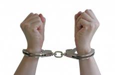 """Federal Judge Finds Mayor Bloomberg's """"Stop & Frisk"""" Policy Violates Our Constitutional Rights"""